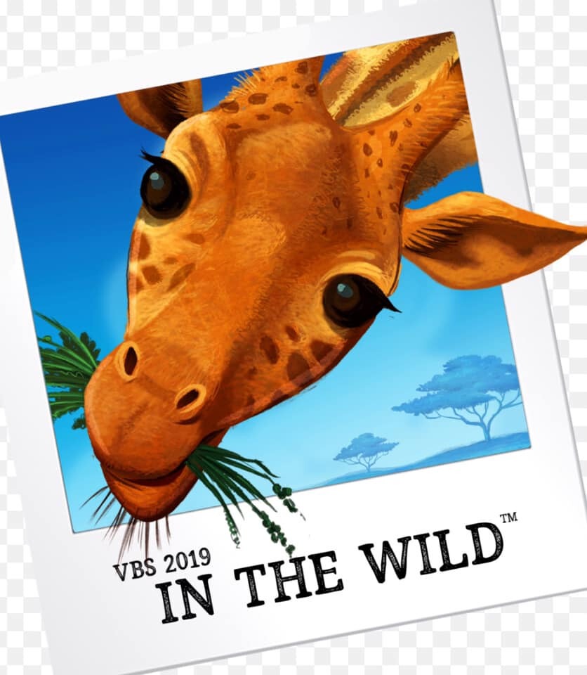 "First Missionary Baptist of Varnado ""In The Wild"" VBS"